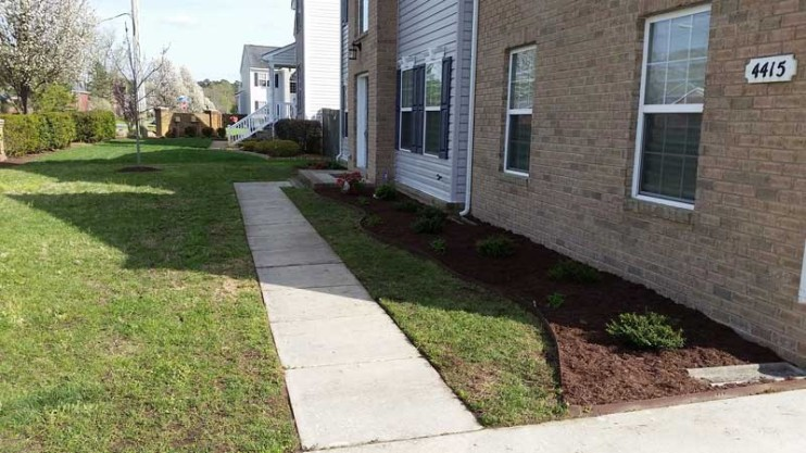 Landscaping, Woodland Drive, Chesapeake
