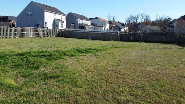 Lawn Maintenance, Woodland Drive, Chesapeake